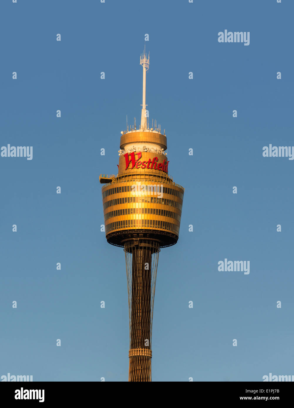 Close up photograph of SydneyTower, bathed in golden afternoon light, Sydney, Australia - Stock Image