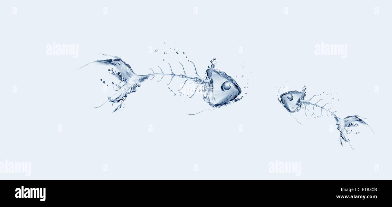 Water Fishbone Sad Story - Stock Image