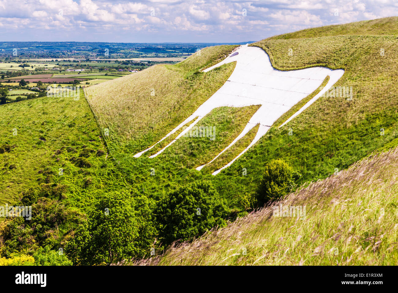 The White Horse below Bratton Camp, an Iron Age hillfort near Westbury in Wiltshire. Stock Photo