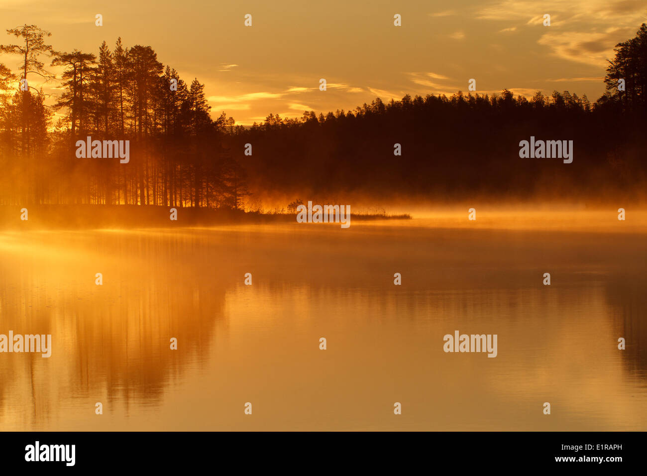 yellow morning light shines over the misty lake - Stock Image