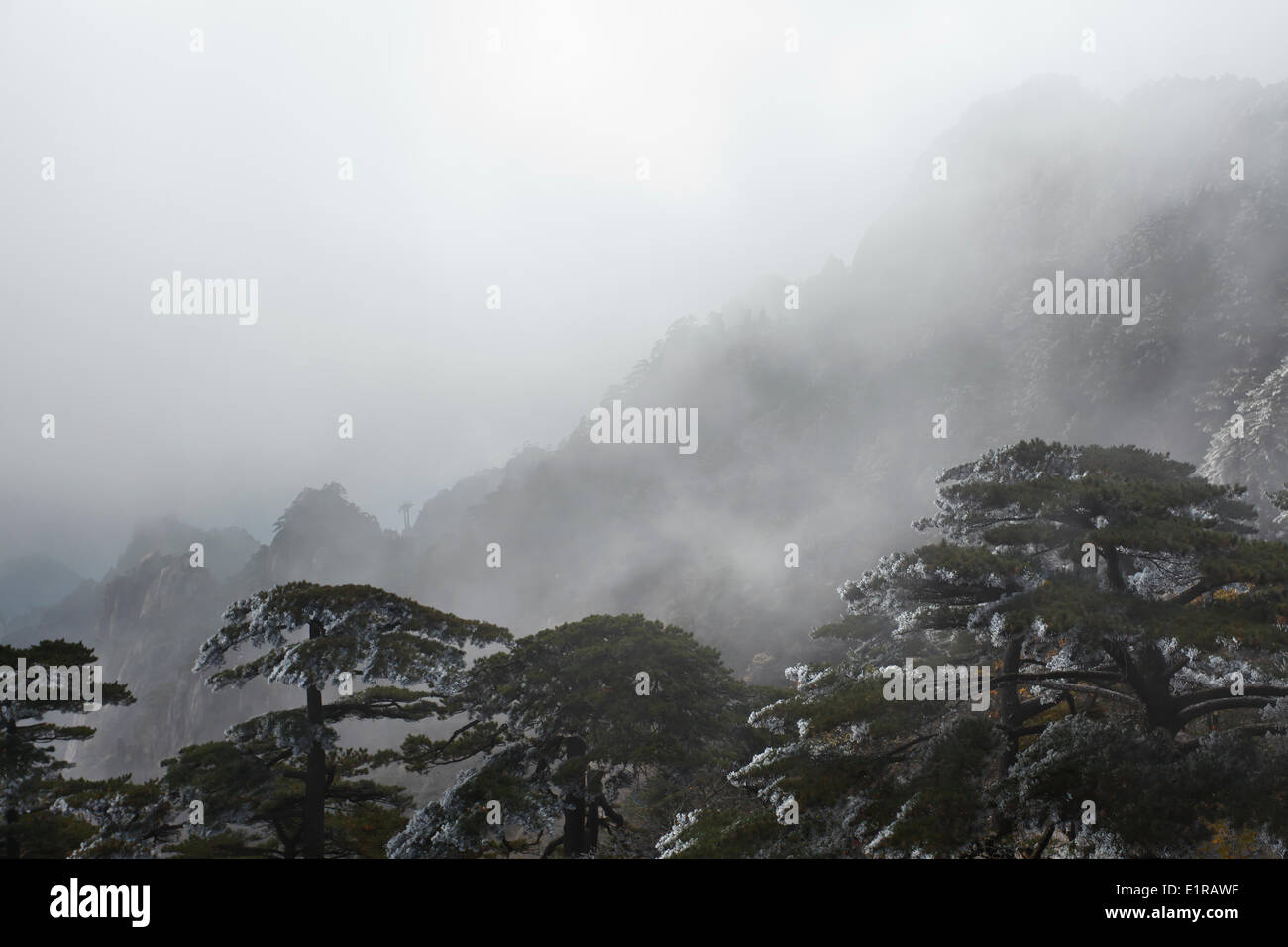 Huangshan frequent subject traditional Chinese paintings literature as well as modern photography Today it UNESCO World - Stock Image