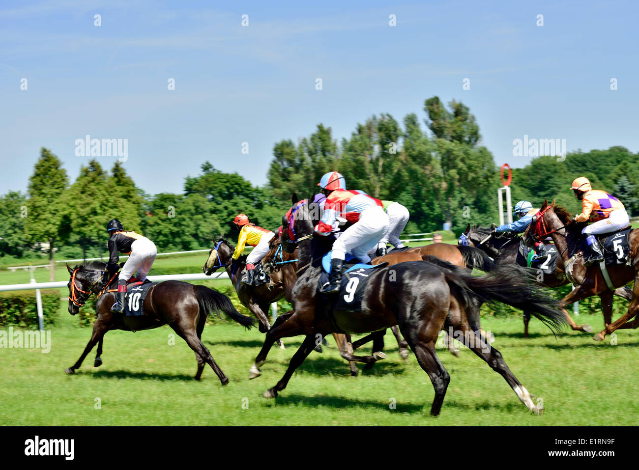 Wroclaw, Poland. 9th June, 2014. President's Day at the track Partenice, race for 3-year-old horses only group III in Wroclaw on Juni 8, 2014. Race wins horse Zucchero with the number 2. - Stock Image