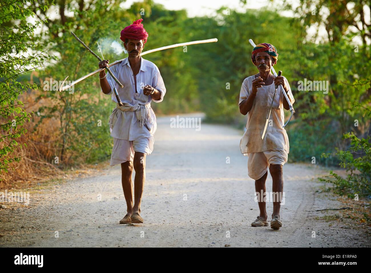 India, Rajasthan, Nimaj village around Jodhpur, Rabari shepherd - Stock Image