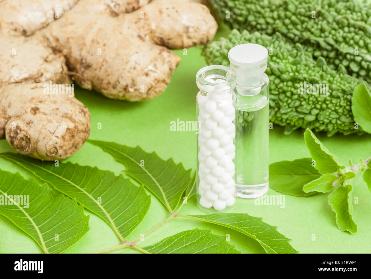 Homeopathic medicine (pills, liquid homeopathic extract) pictured with homeopathic herbs (ginger, bitter gourd, neem, basil). - Stock Image