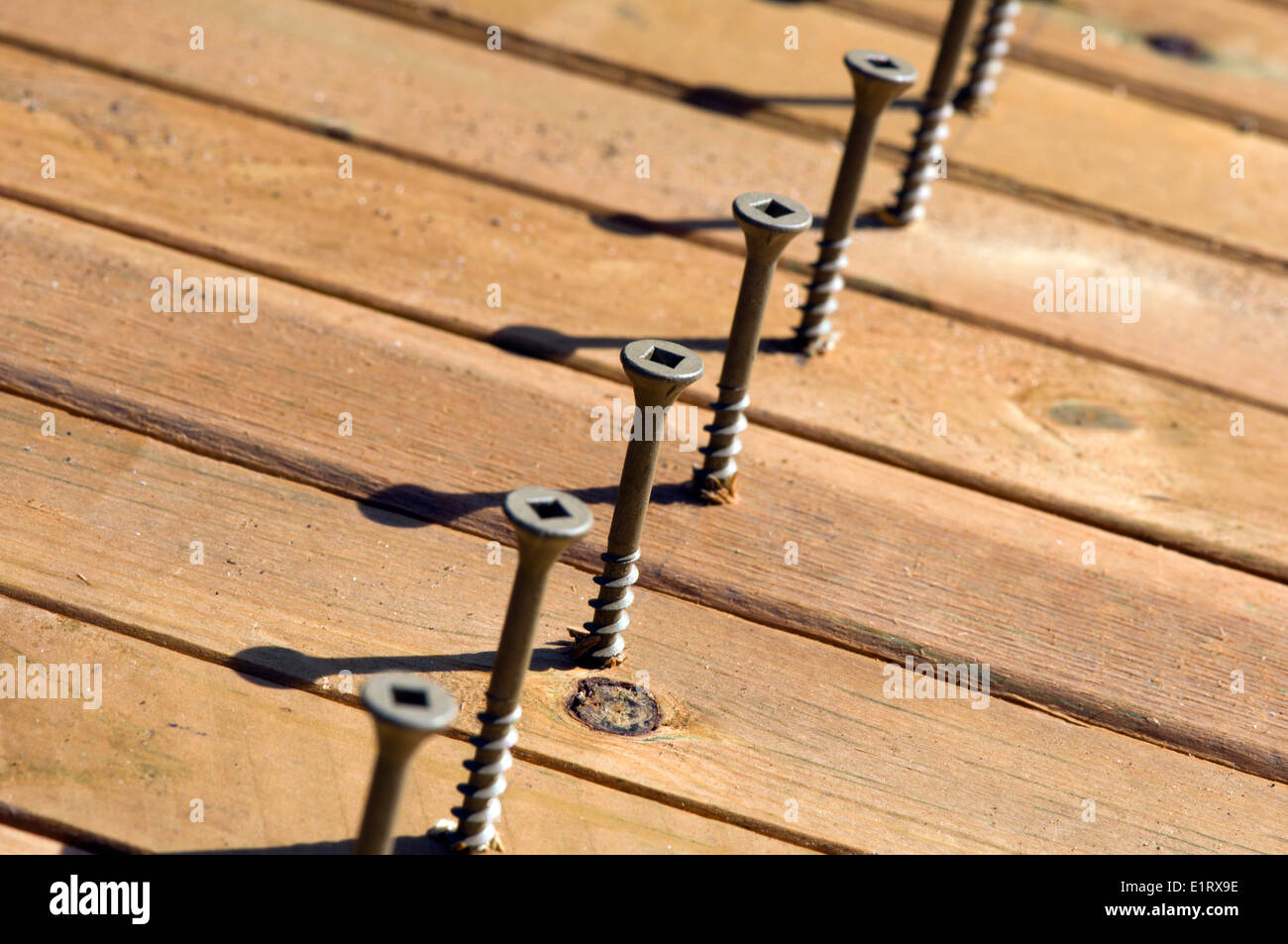 Wood screws in wood pickets - Stock Image