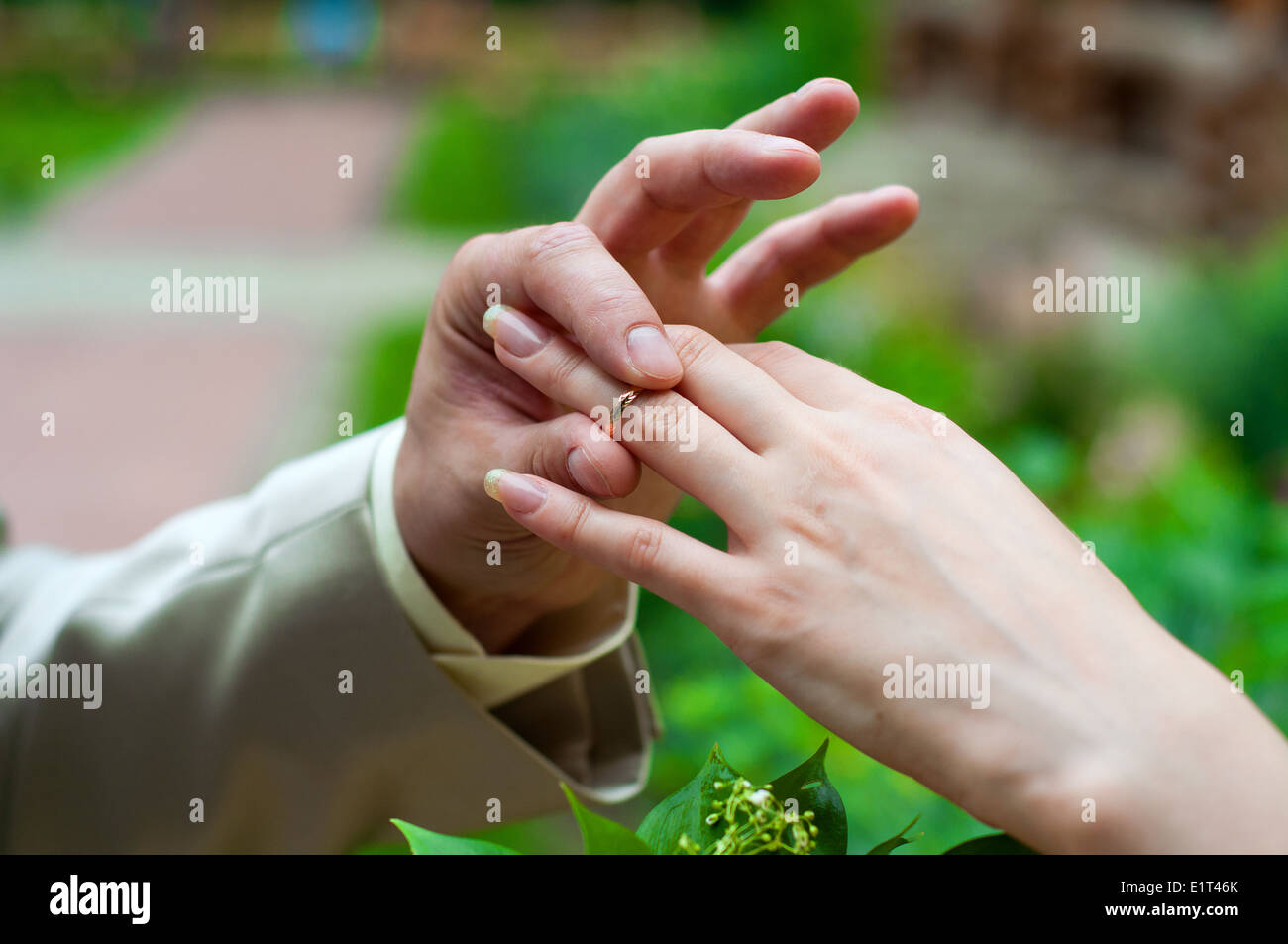Man's hand putting wedding ring on woman's hand - Stock Image