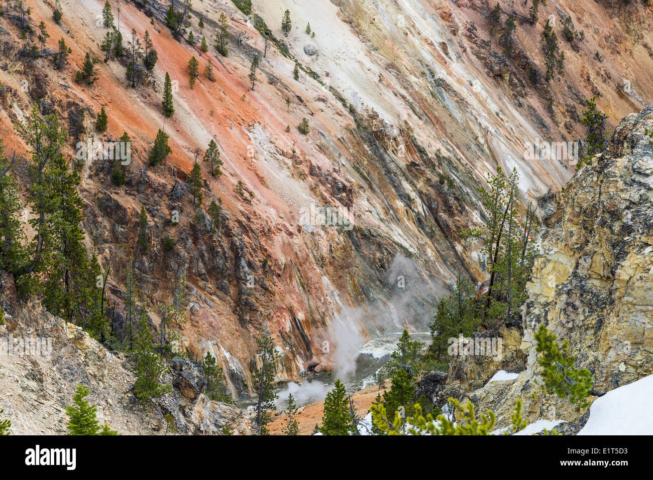 Steam vents at the Grand Canyon of the Yellowstone National Park, Wyoming, USA. - Stock Image