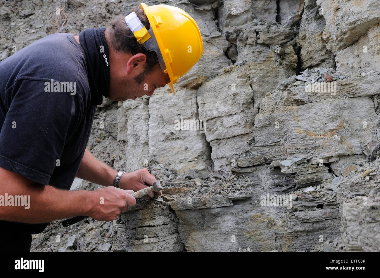 Man looking for fossils in quarry of Winterswijk - Stock Image