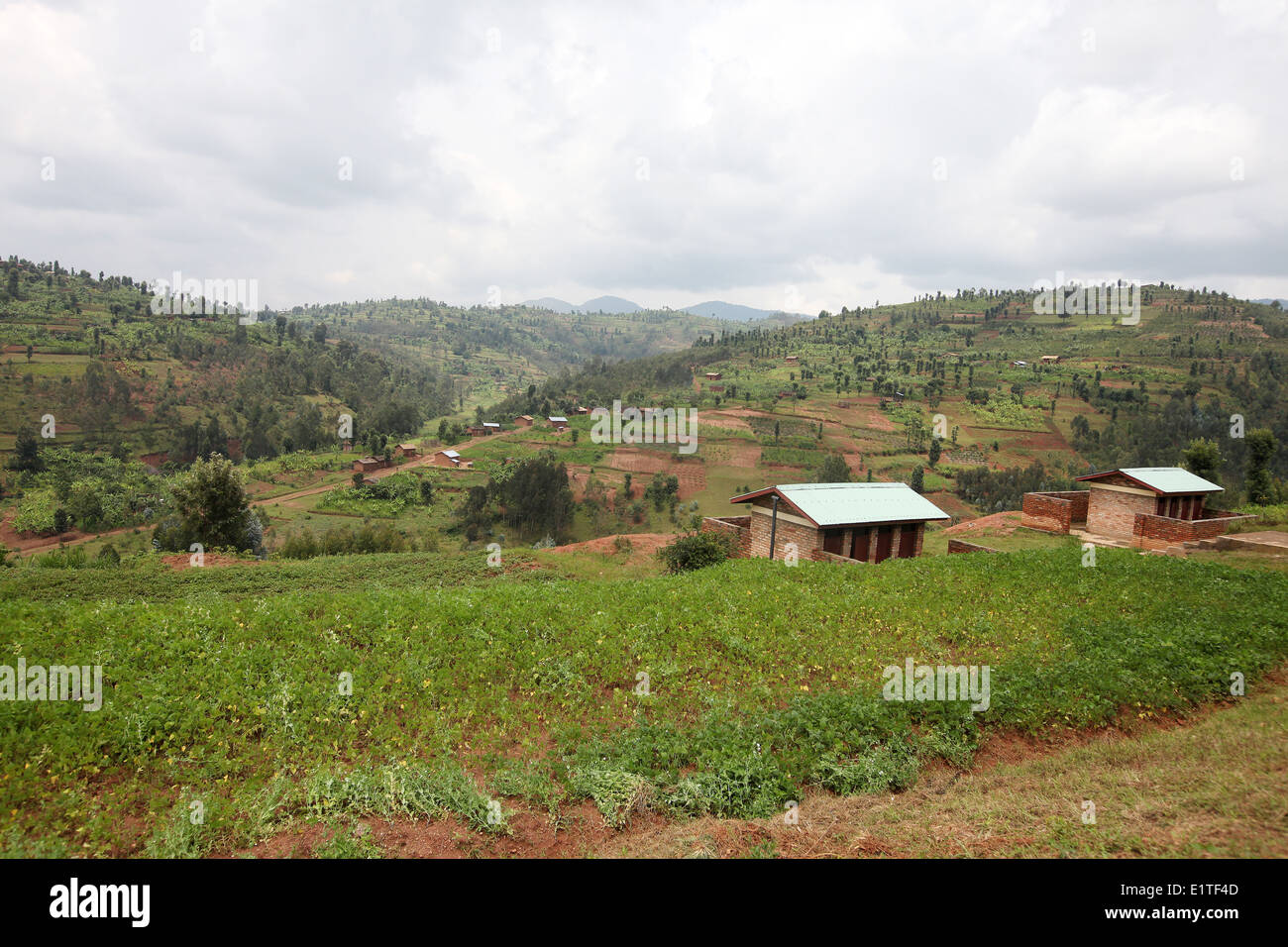 A rural village in the Murambi sector in the Rulindo district of Northern Province, Rwanda. - Stock Image