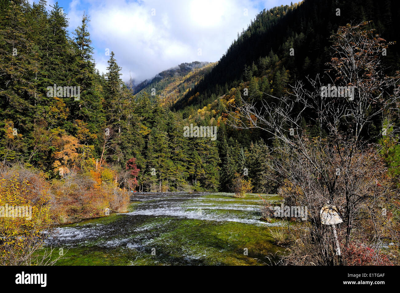 View of a freshwater stream from the walking path in autumn in JiuZhaiGou National Park in Sichuan Province, P.R. Stock Photo