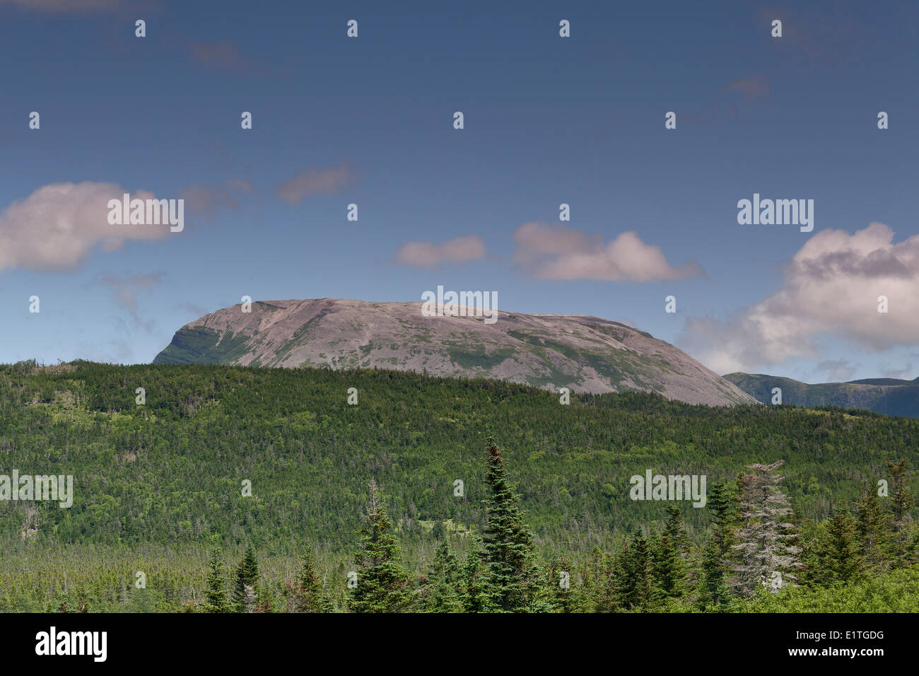 Gros Morne - the lonely looking bare mountain that gave Gros Morne National Park on Newfoundland, NL, Canada its name - Stock Image