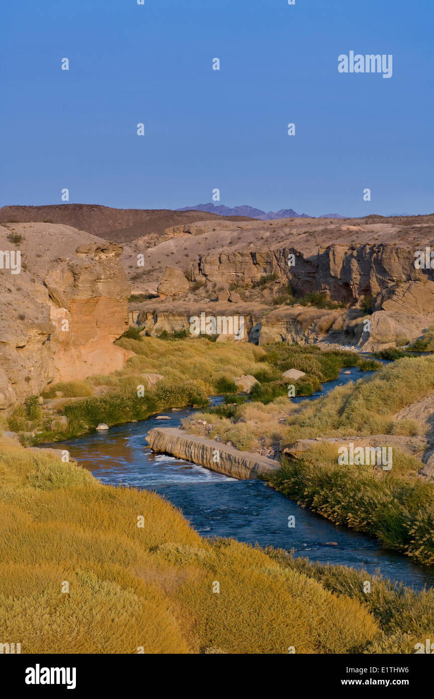 Creek draining into Lake Mead, Nevada, USA - Stock Image