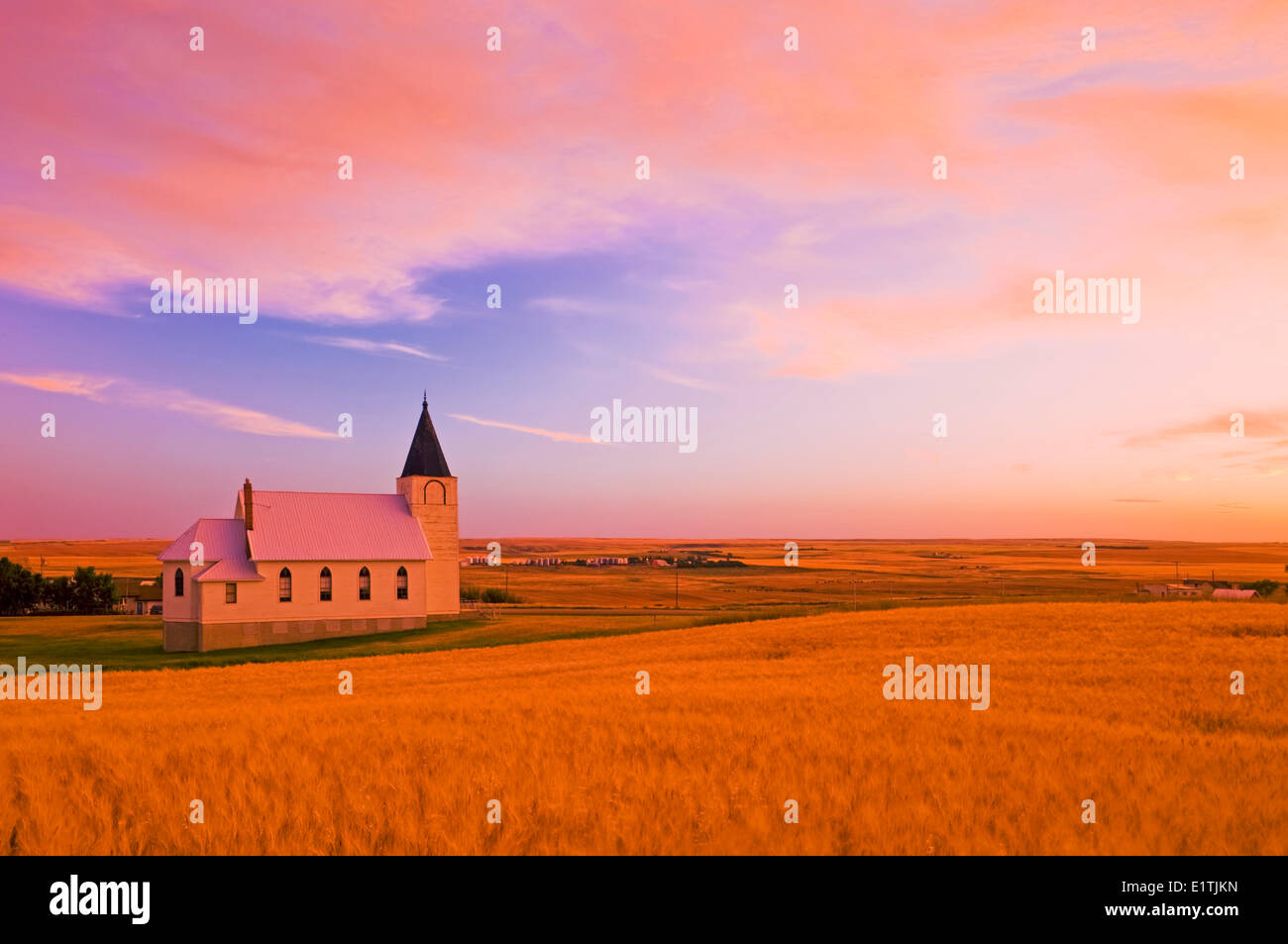mature, harvest ready wheat field with church in the background, Admiral, Saskatchewan, Canada - Stock Image