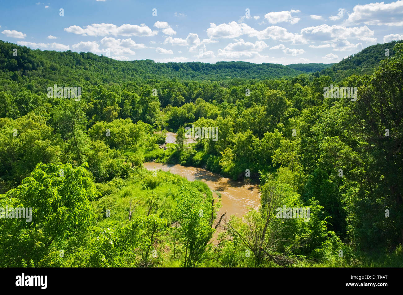 spring foliage in the Pembina Valley, Manitoba, Canada - Stock Image