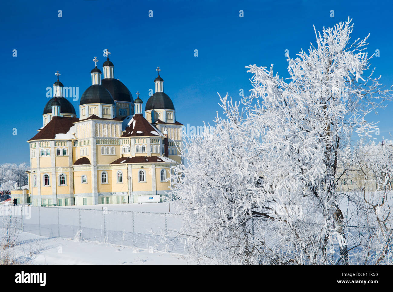 frost covered trees/ Immaculate Conception Church, Cooks Creek,   Manitoba, Canada - Stock Image