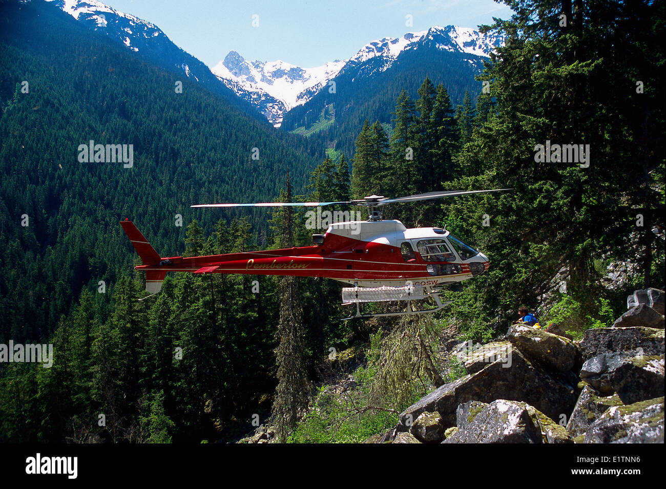 Helicopter hover exit, Billygoat Creek, Pemberton, biology, spotted owl survey, BC, Canada - Stock Image