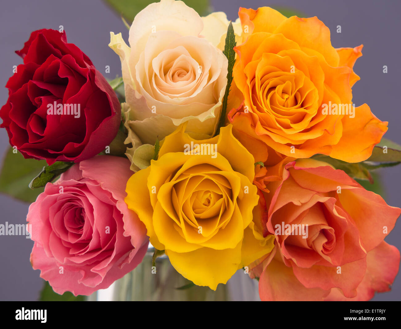 Close Up Of An Arrangement Of Yellow Red White Orange And Pink Stock Photo Alamy