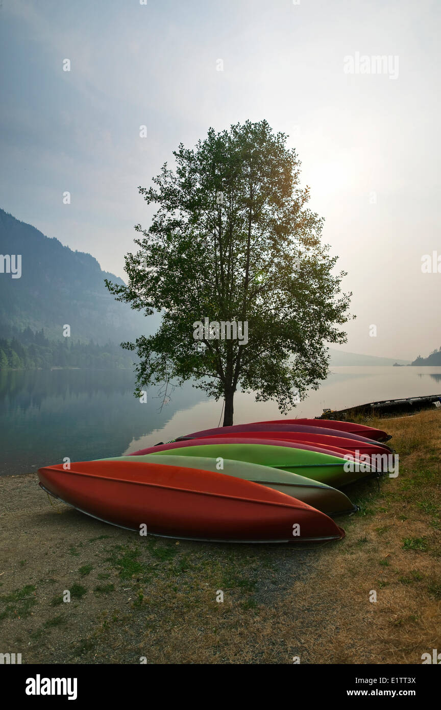 Canoes set against a tree Horne Lake, Vancouver Island, British Columbia, Canada - Stock Image