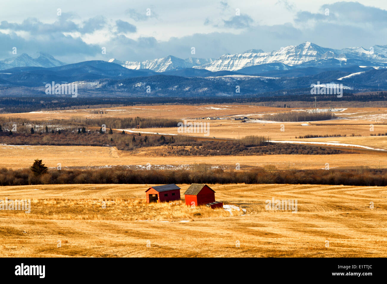 Barns with Rocky Mountains in background, Jumping Ground Road, Alberta, Canada - Stock Image
