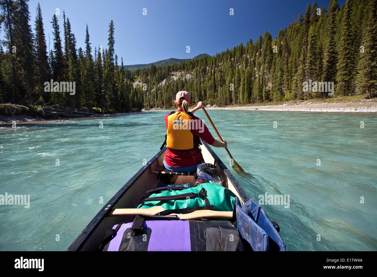 Woman paddling in bow of canoe on Kootenay River, Kootenay National Park, BC, Canada. - Stock Image