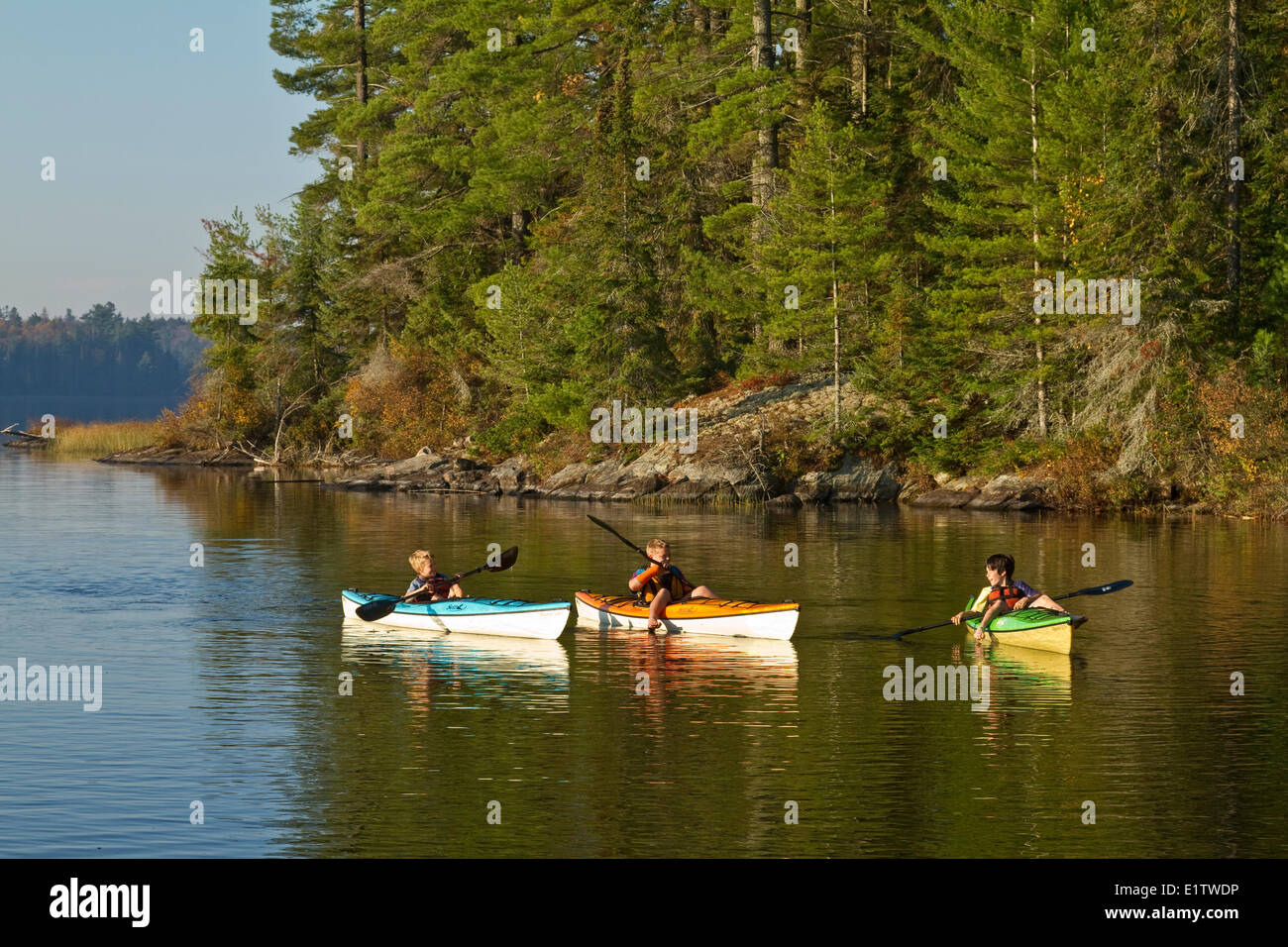 Three young boys paddle kayaks on Source Lake, Algonquin  Park ,Ontario, Canada. - Stock Image