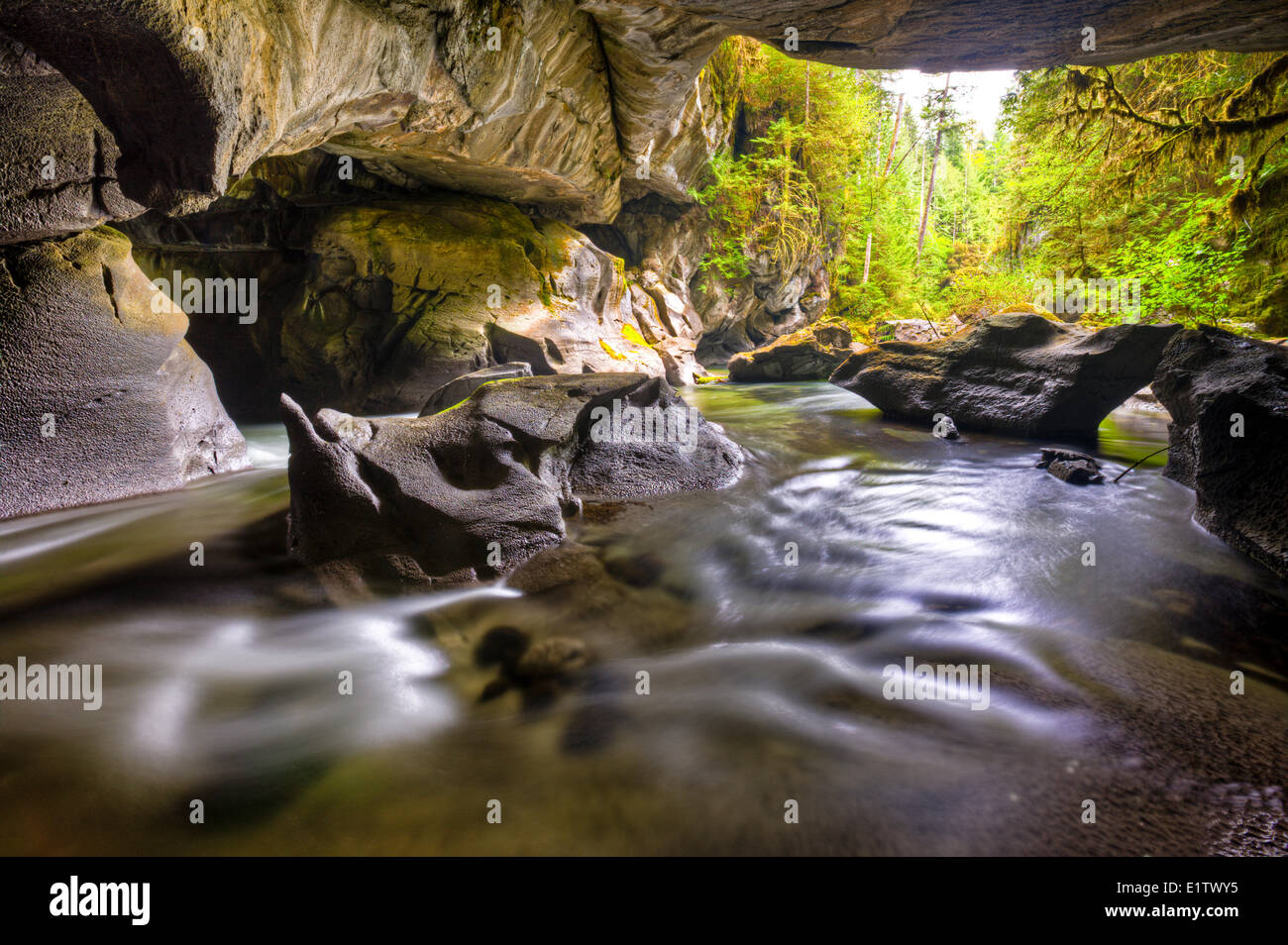 HDR photo of Dinosaur Rock in Little Huson Cave in Little Huson Cave Regional Park, Vancouver Island, British Columbia, - Stock Image