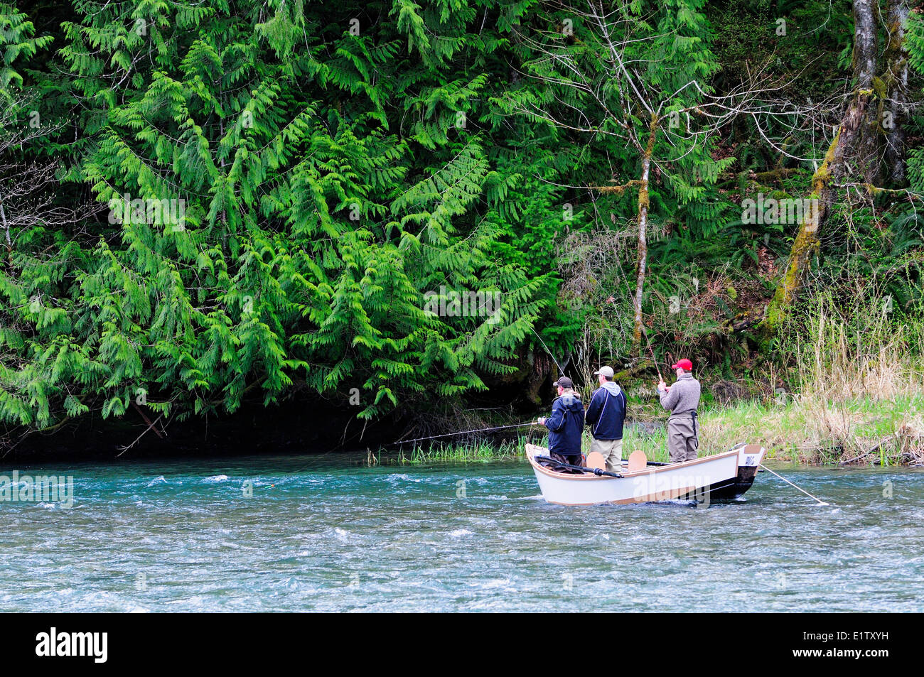 Three guys fishing out of a drift boat while drifting down the Cowichan River near Duncan, BC. - Stock Image