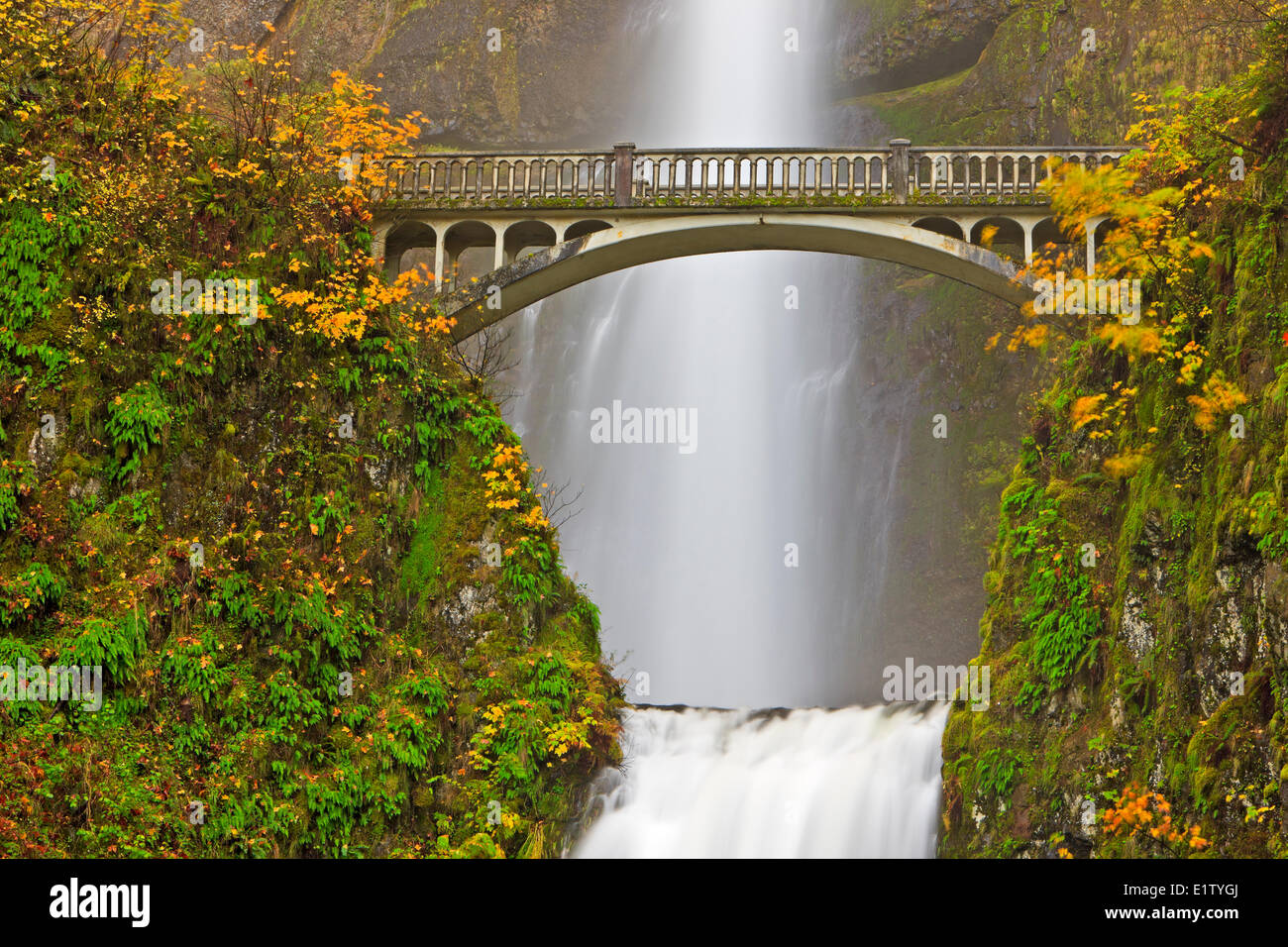 Tourist attraction Multnomah Falls a 611-foot-tall roaring awe-inspiring cascading waterfall in late fall with Benson - Stock Image