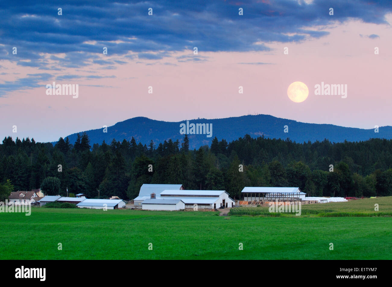 A full moon rises over a farm in Cowichan Station, near Duncan, BC. - Stock Image