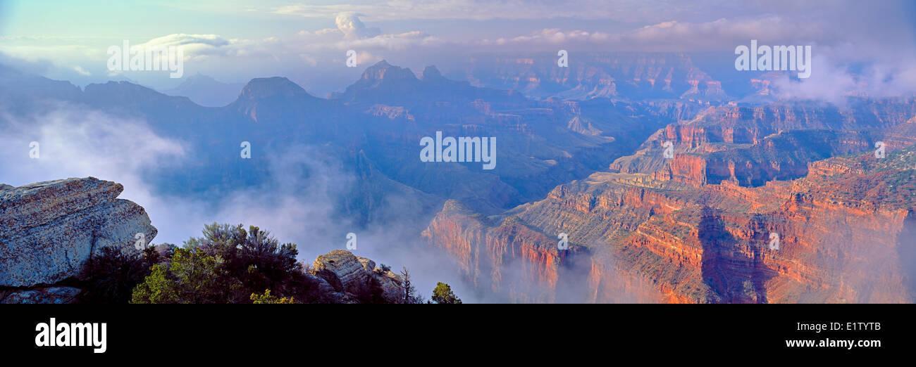 Northamerica-USA-Arizona Grand Canyon National Park North Rim, spring, fog, clouds - Stock Image