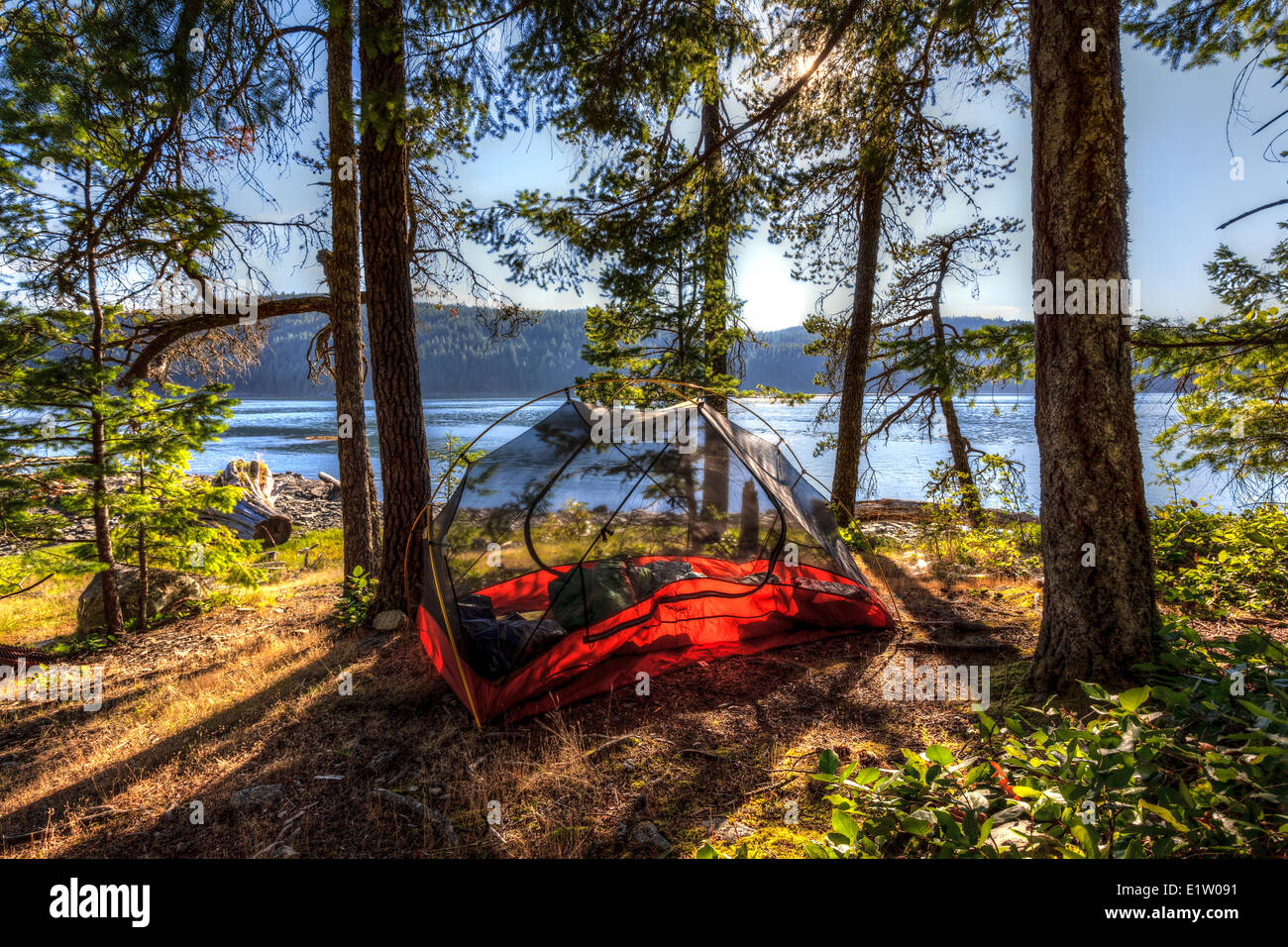 The evening sun shines through a kayaker's tent on Read Island located between Quadra Cortes Island British - Stock Image