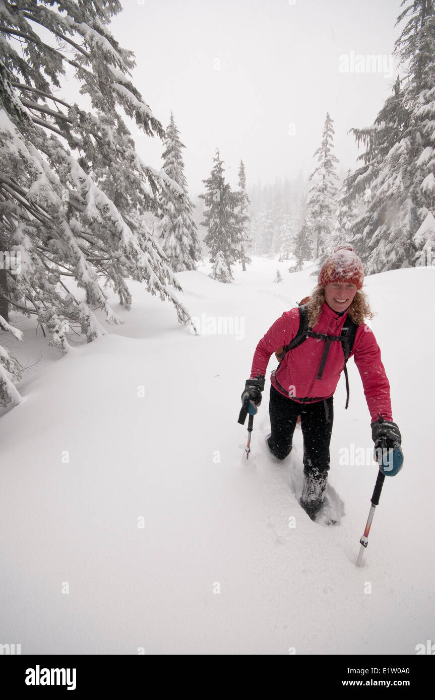 Snowshoeing on the Howe Sound Crest Trail. Cypress Provincial Park. Cypress Bowl, West Vancouver, British Columbia, - Stock Image