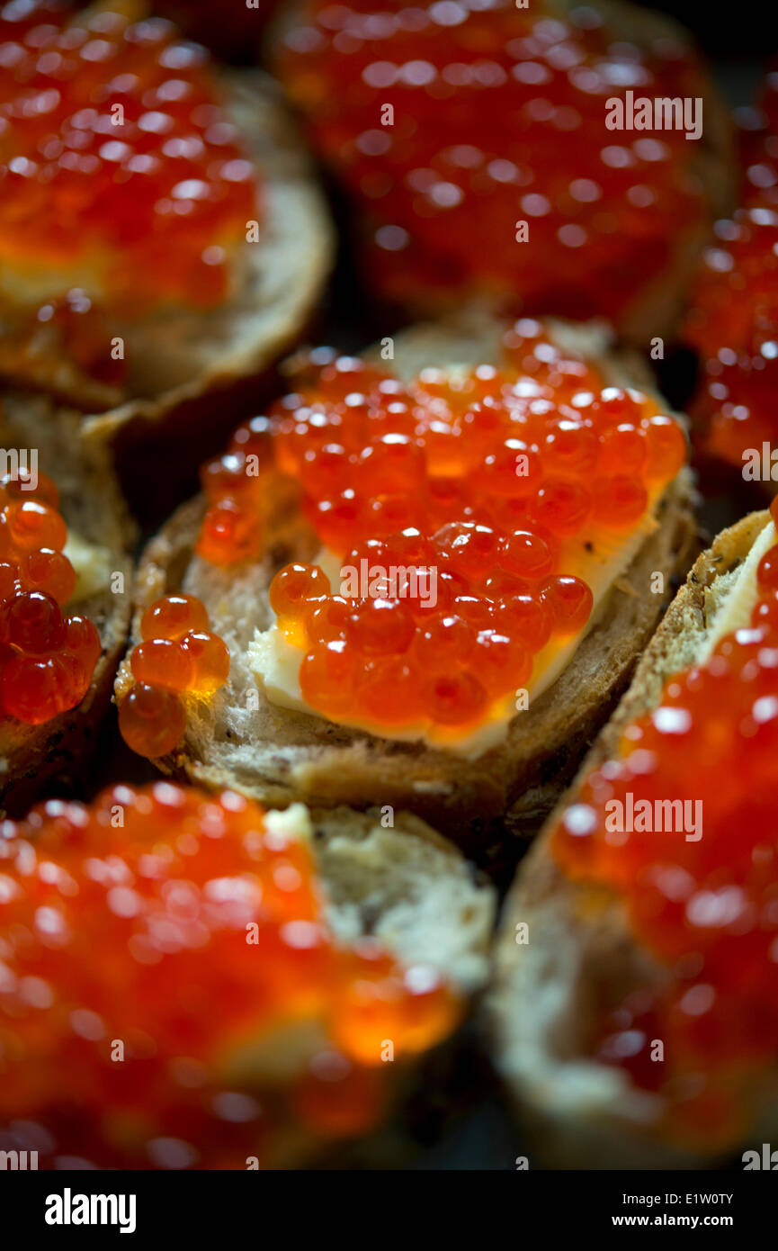 Red caviar sandwich placed in a plate on a table - Stock Image