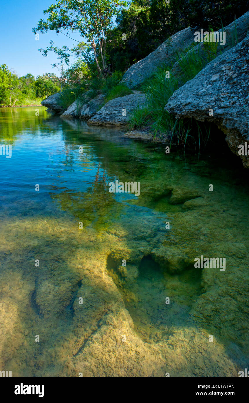 Petrified Dinosaur footprints in the Paluxy River. - Stock Image