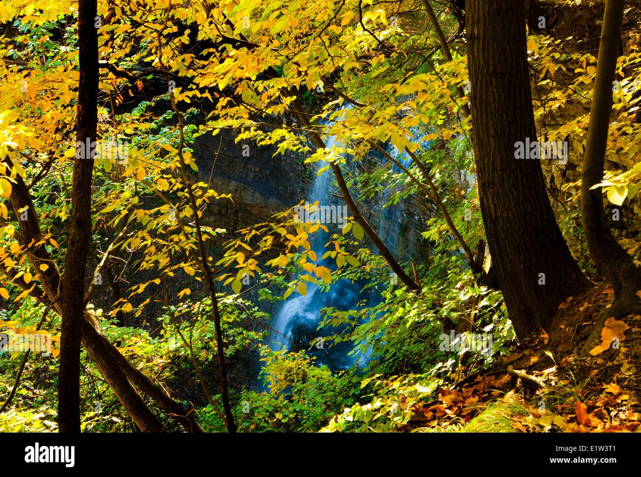 Felker's Falls, Autumn Niagara Escarpment Ontario Canada - Stock Image