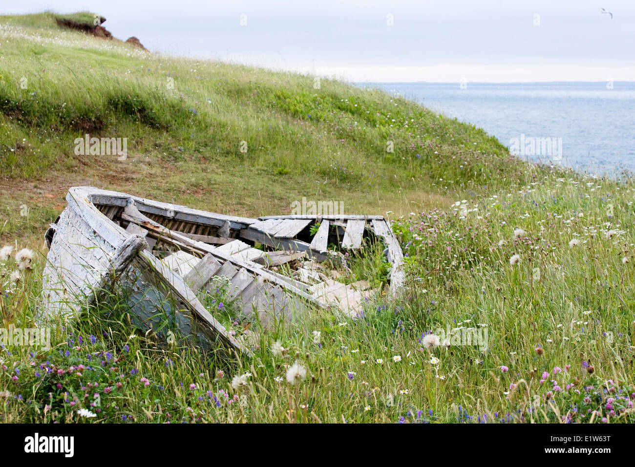 A forgotten dory on the coast of Grosse Île, Magdalen Islands, Quebec.  © Allen McEachern. - Stock Image
