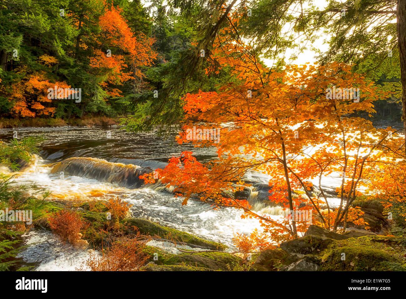 Mills Falls, Mersey River, Kejimkujik National Park, Nova Scotia, Canada - Stock Image