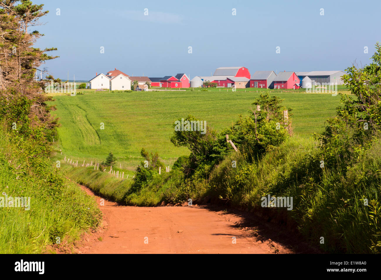 Country road, Park Corner, Prince Edward Island, Canada - Stock Image