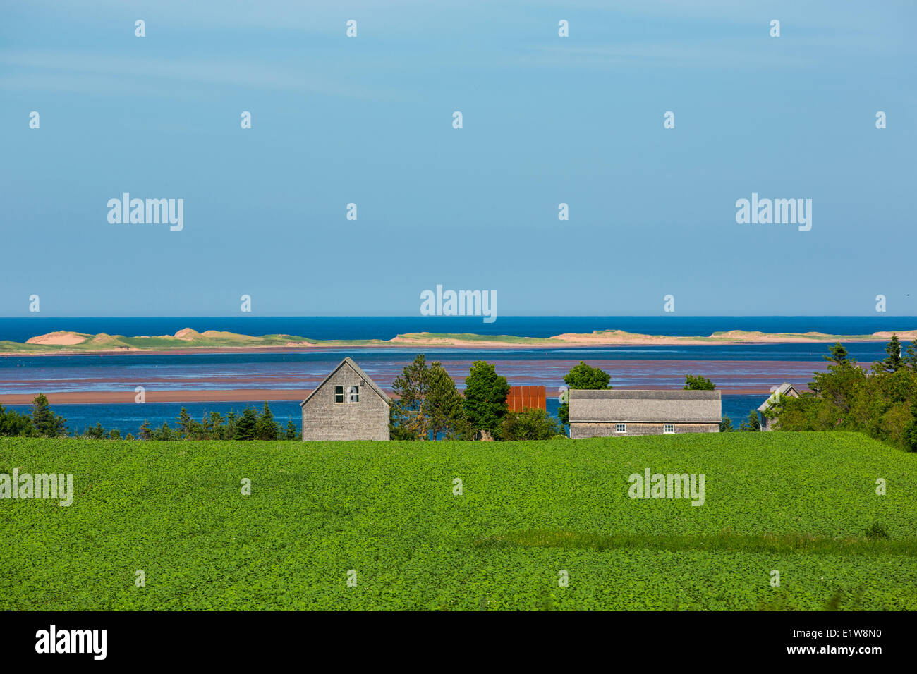 Barns, Springbrook, Prince Edward Island, Canada - Stock Image