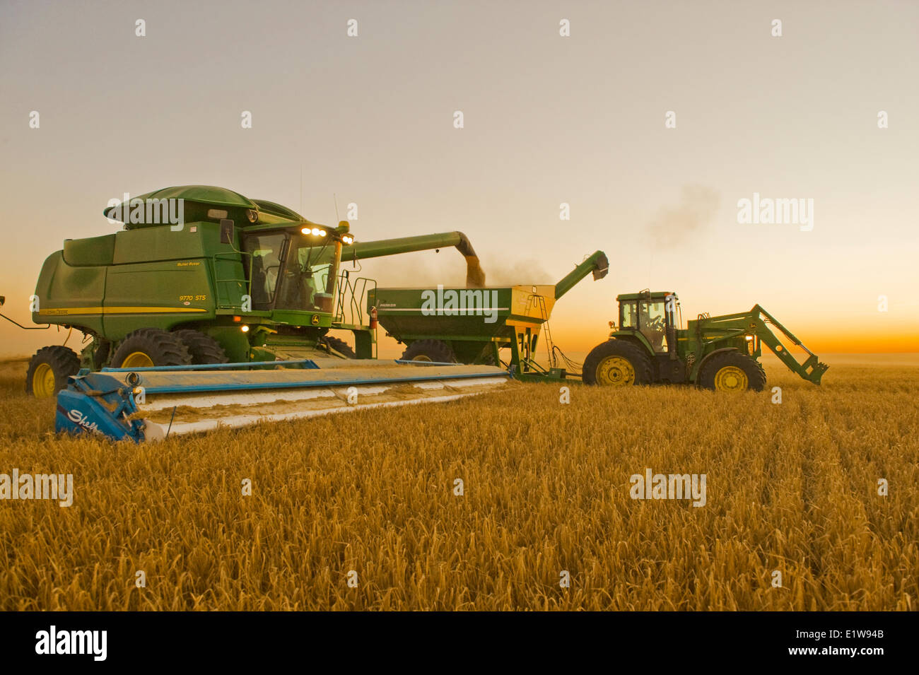 Combine unloads barley in to a grain wagon on the go near Ponteix, Saskatchewan, Canada - Stock Image