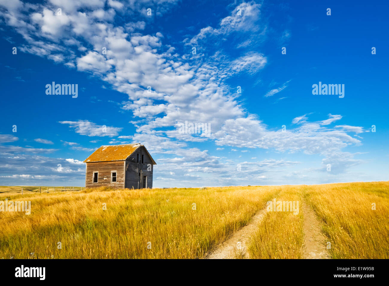 Abandoned farm house, near Admiral, Saskatchewan, Canada - Stock Image