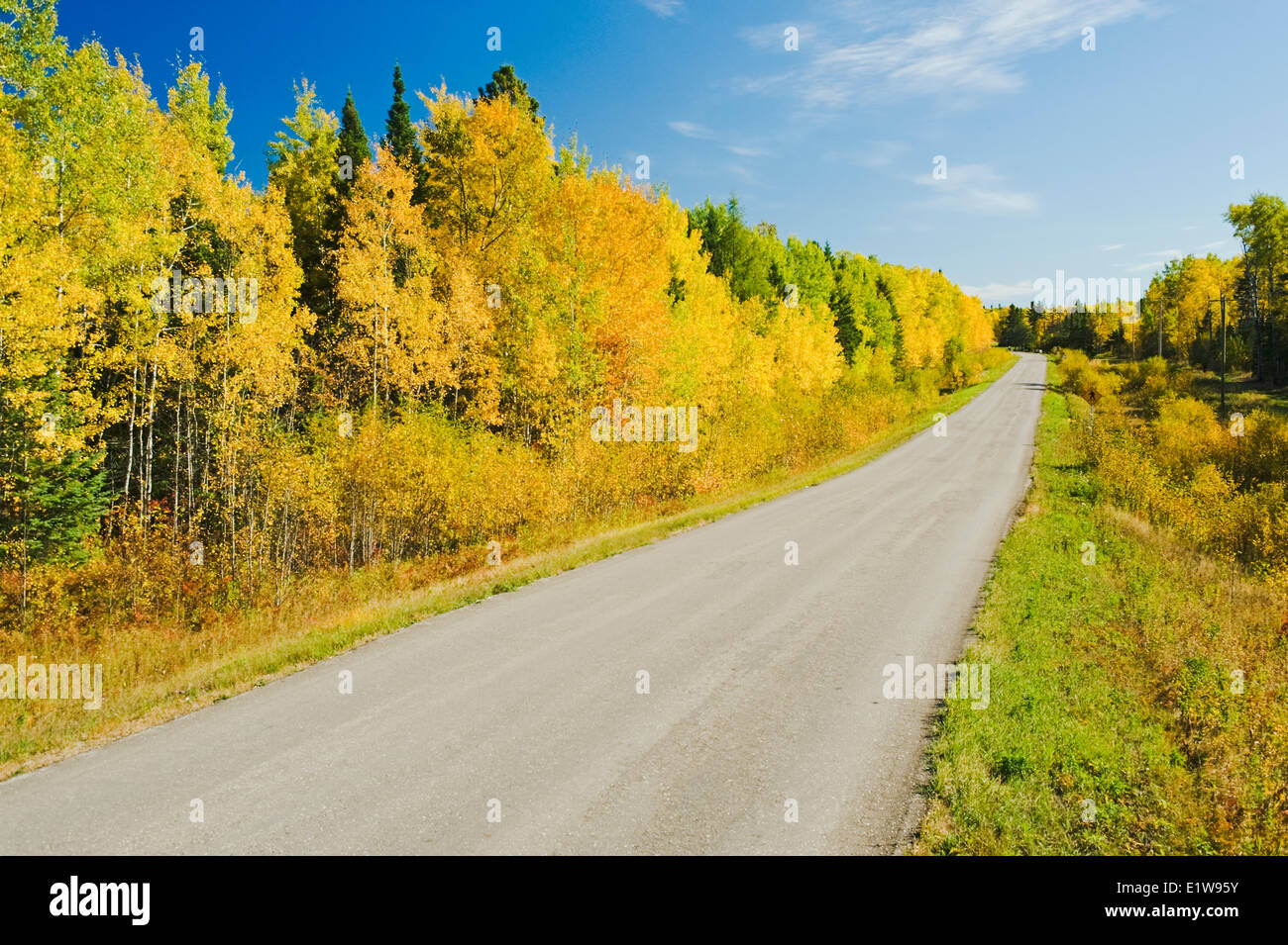 Autumn along a road going through Whiteshell Provincial Park, Manitoba, Canada - Stock Image