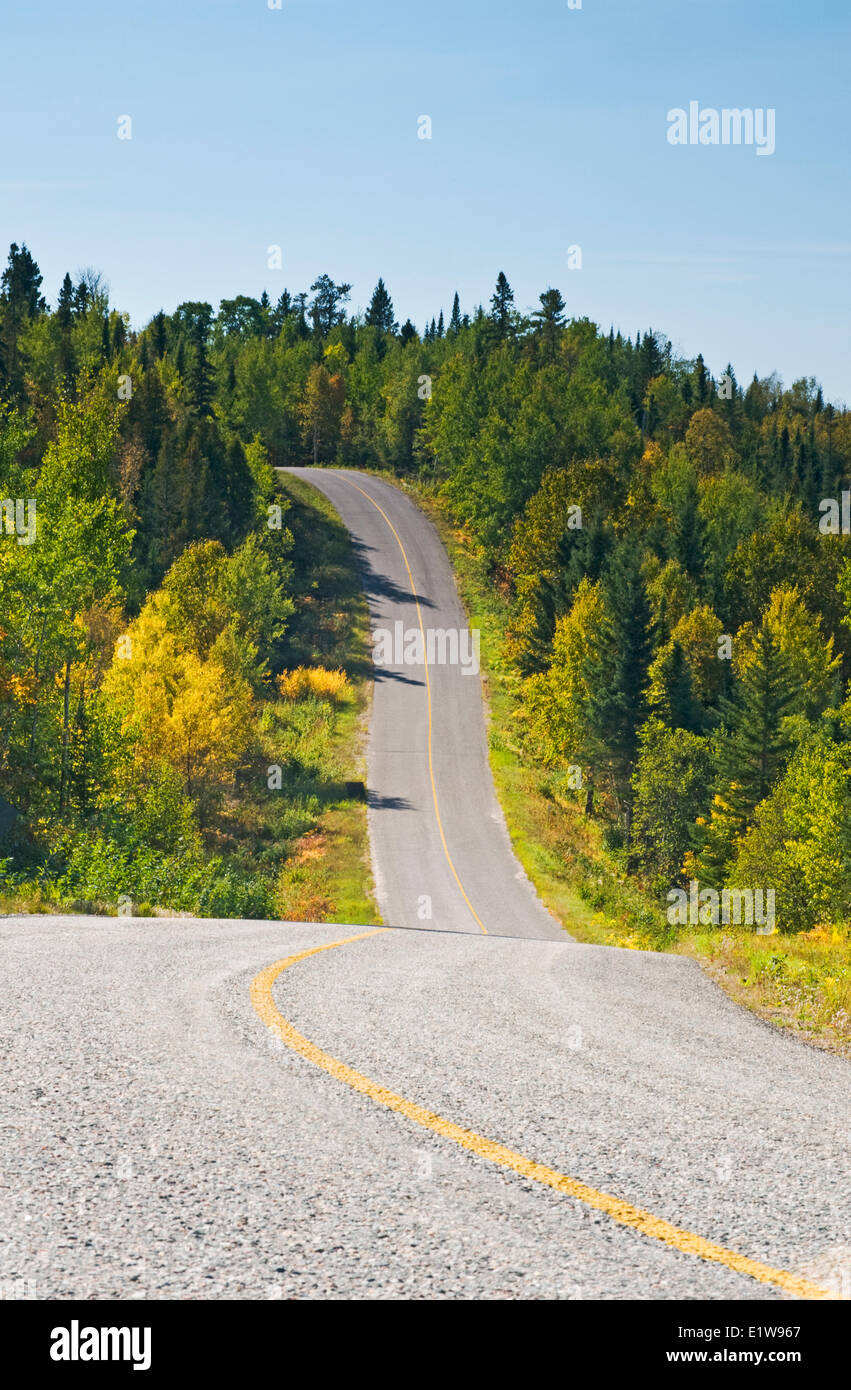 Paved road going through forest, Lake of the Woods, Ontario, Canada - Stock Image