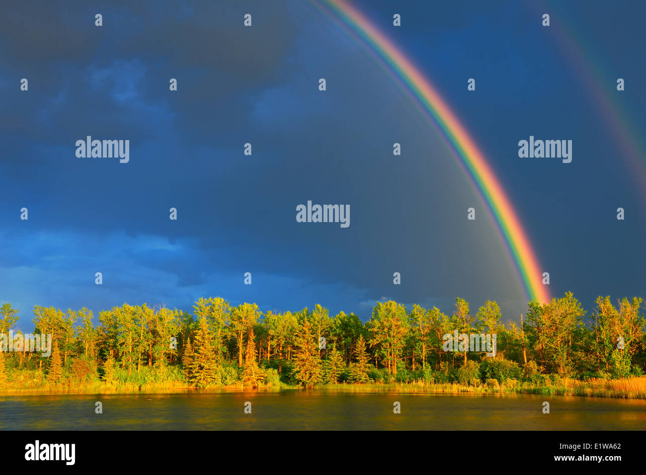 Rainbow and forest, Yorkton, Saskatchewan, Canada - Stock Image