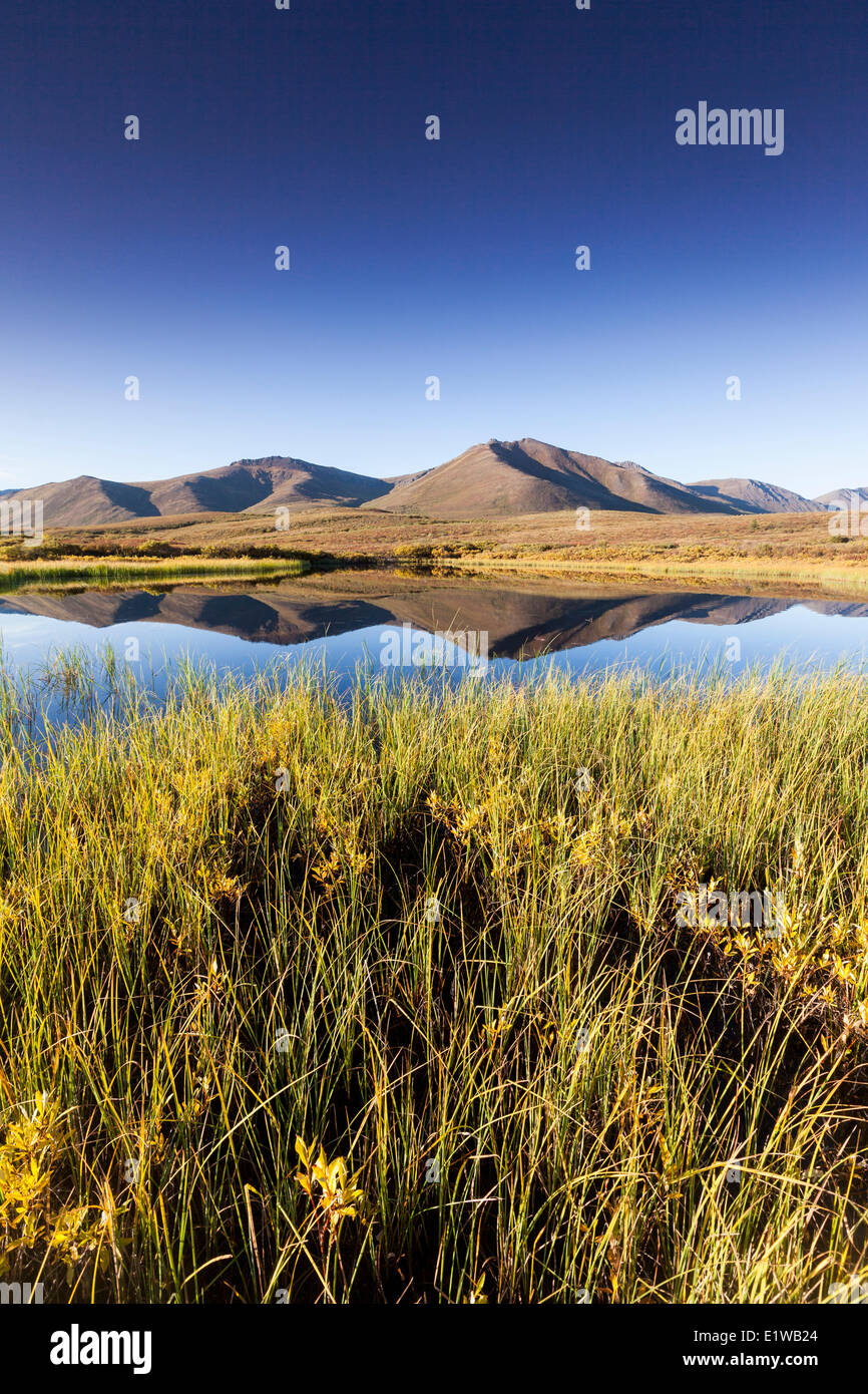 Blackstone Uplands reflection in a thaw-lake in the permafrost in Tombstone Territorial Park, Yukon Territory, Canada - Stock Image