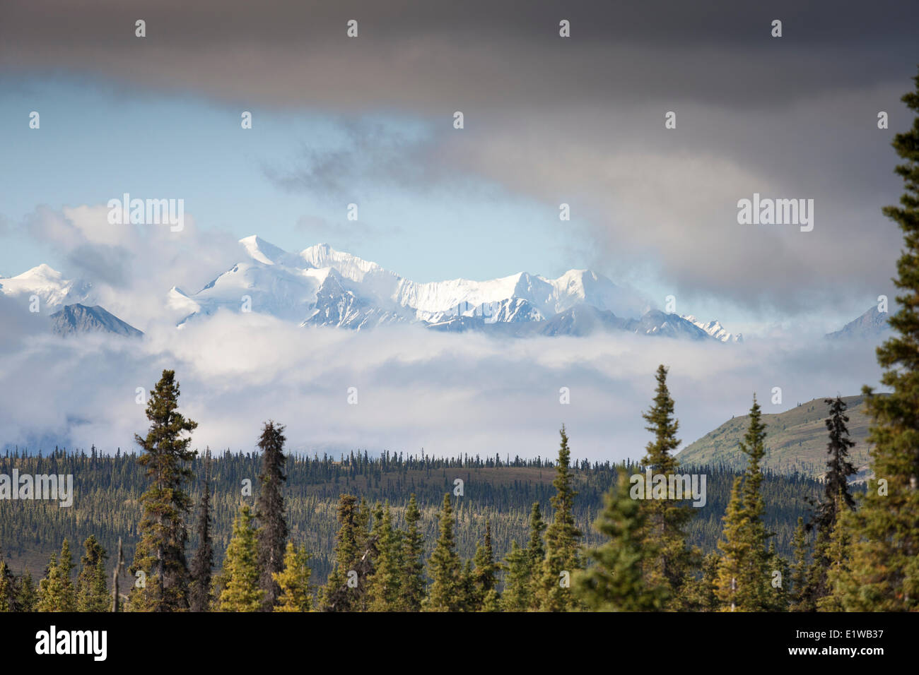View of the Chugach Mountains from the Glenn Highway, Alaska, United States of America - Stock Image