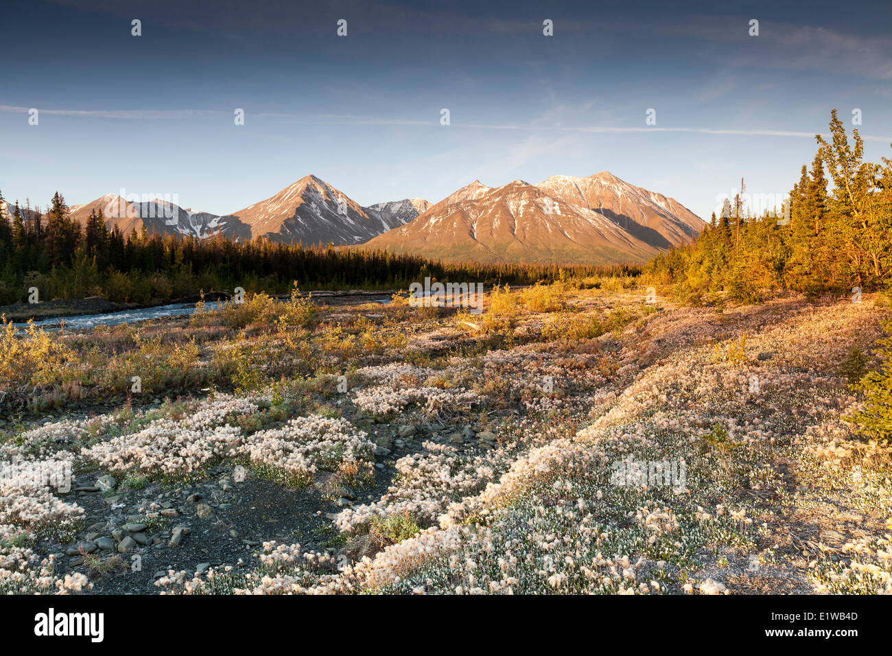 Quill Creek in Kluane National Park and Reserve, Yukon, Canada - Stock Image