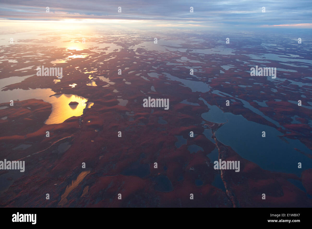 An Aerial view of the Arctic tundra in Autumn, Northwest Territories, Canada. - Stock Image