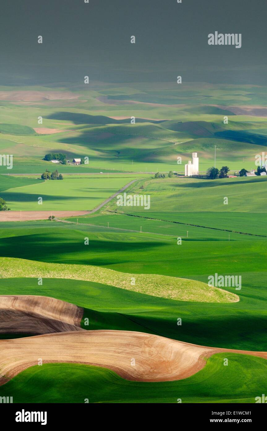 A silo, farms and rolling farm land in the Palouse region in