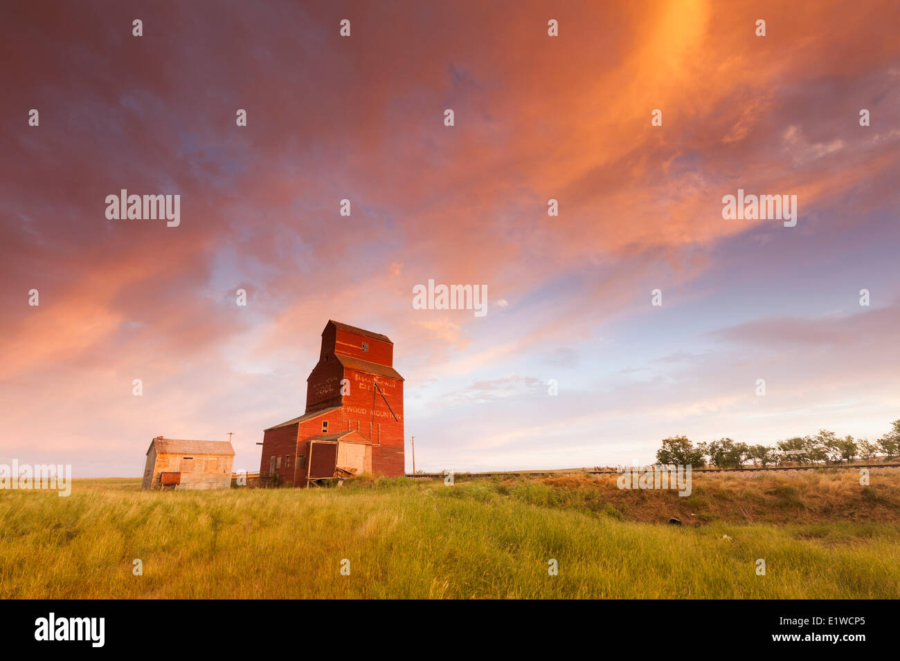 The decaying grain elevator at Wood Mountain, Saskatchewan, canada - Stock Image